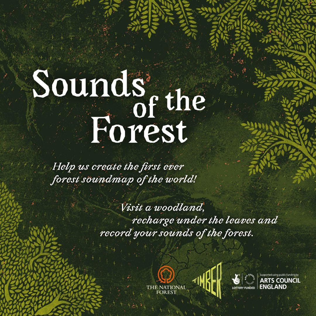 Metsa hääled