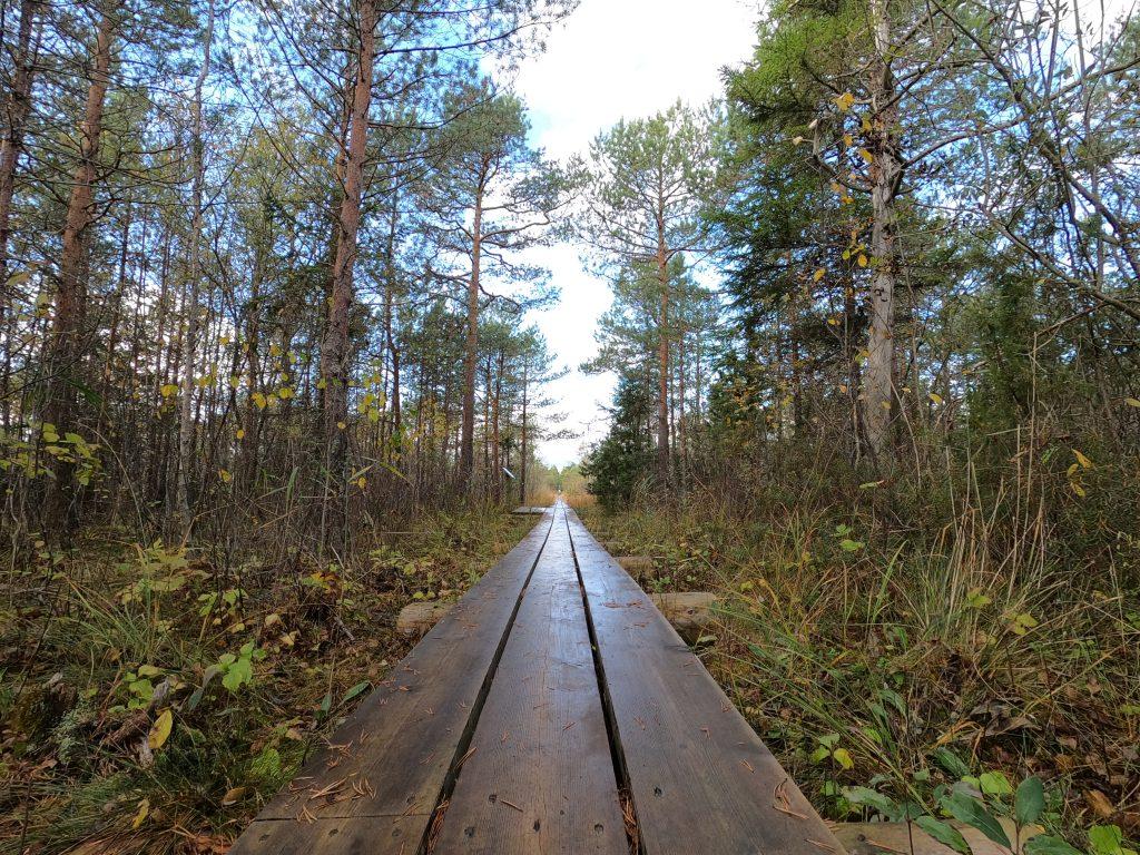 hiking.ee - hiking in Estonia