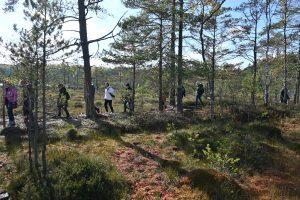 sünnipäev metsas - tule loodusesse!